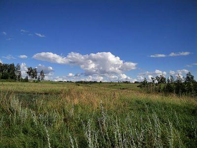 Наш дом в Черкассах. Вид со стороны огорода