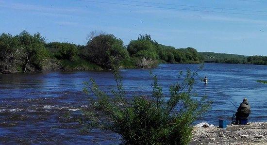 Рыбалка на речке Быстрая Сосна